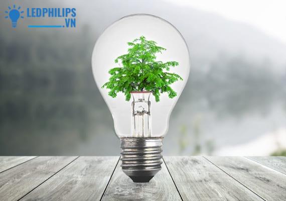 Ưu điểm của đèn LED Bulb